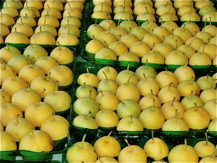 packed 20th Century pears